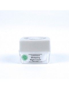 MS GLOW Luminous Night Cream / Krim Pencerah Wajah